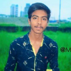 Profile picture of মোঃ মুন্না হোসেন মহা আলম